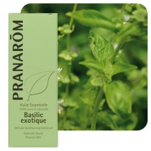 Huile essentielle de Basilic - 10 ml