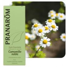 Huile essentielle de Camomille romaine - 5 ml