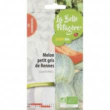 Melon Petit gris de Rennes 0,6g