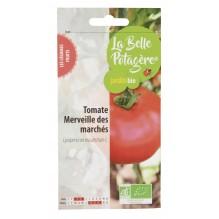 Tomate Merveille des marchés 0,15g - Lycopersicon esculentum L.