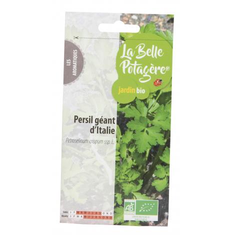 Persil géant d'Italie 2g - Petroselinum crispum ssp. L.