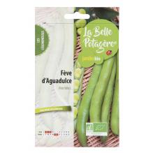 Fève d'Aguadulce 50g - Vicia faba L.
